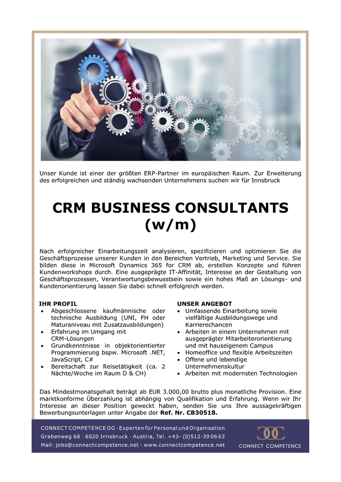 CRM BUSINESS CONSULTANTS (w/m)