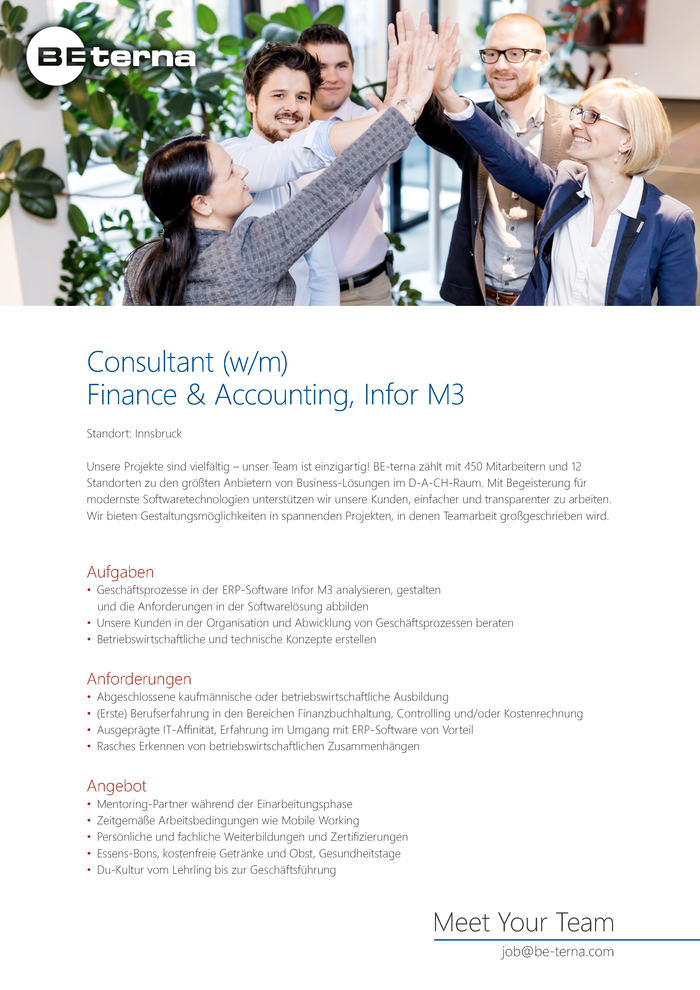Consultant (w/m), Finance & Accounting, Infor M3