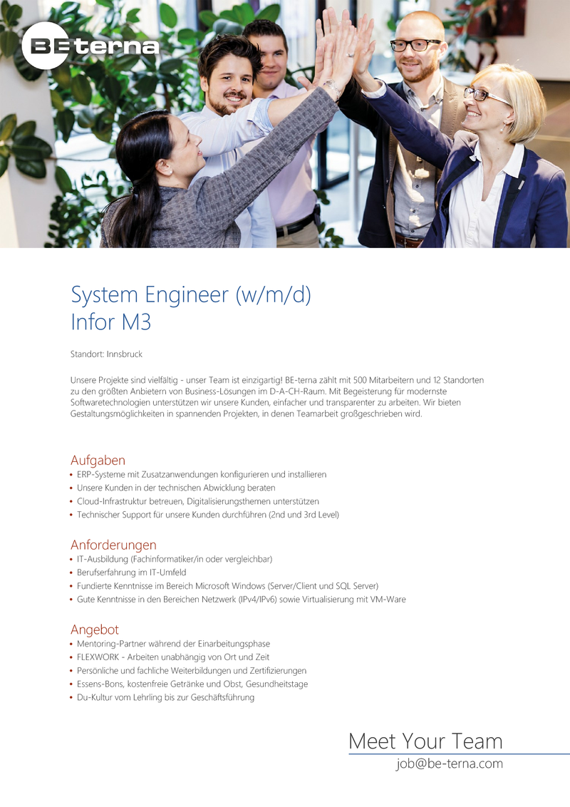 System Engineer (w/m/d) Infor M3