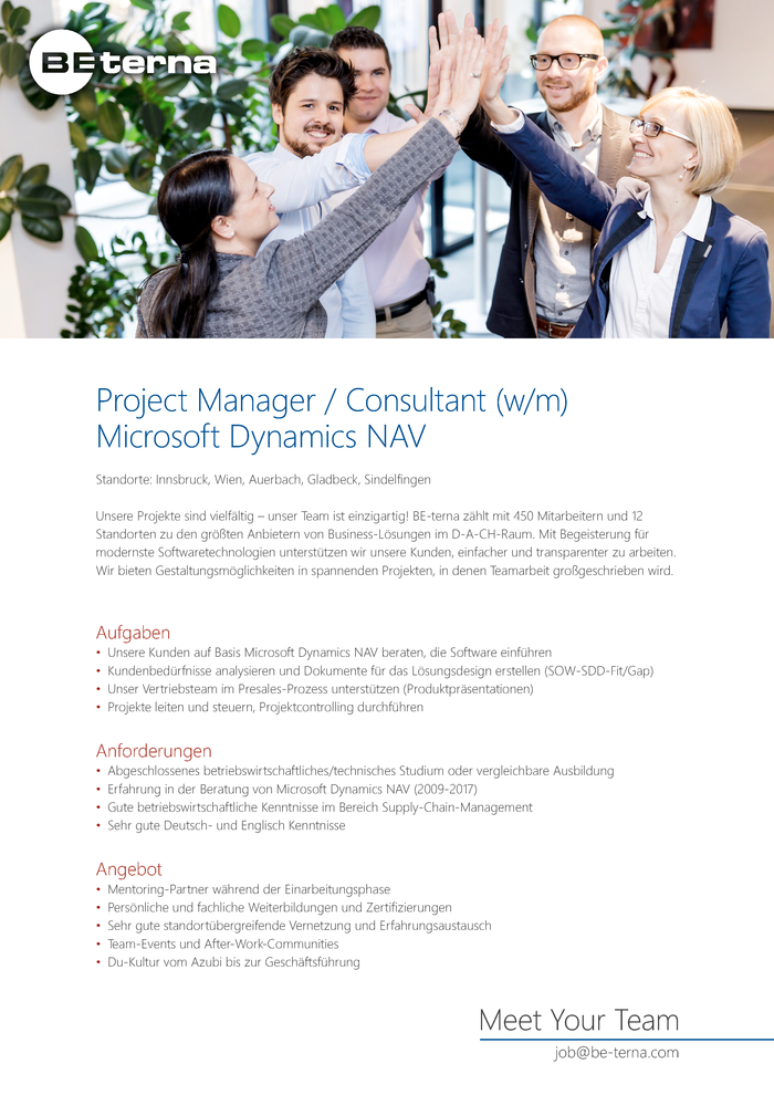 Project Manager / Consultant (w/m), Microsoft Dynamics NAV